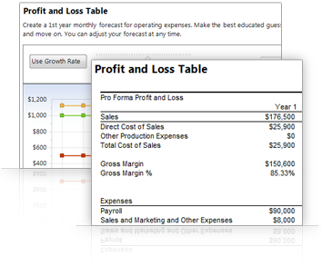 business plan pro standard edition palo alto software